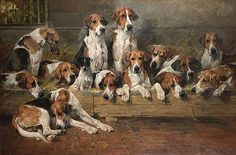 Seeking superior fine art prints of New Forest Foxhounds by John Emms? Customize the size, media & framing for your style. Hunting Art, Fox Hunting, York Dog, Animal Painter, Terrier, The Fox And The Hound, Doberman Pinscher, Doberman Dogs, Vintage Dog