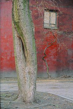 Дмитрий Конрадт: «Я испытываю нормальное человеческое желание запечатлеть исчезающую фактуру»   spbphotographer.ru