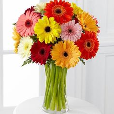 Send this Colorful one dozen Colorful Gerberas Bouquet to your Friends on Friendship Day. Send a smile on any occasion with this bouquet that spreads the warmth and happiness. Gerberas means innocence and purity, also a classic symbol of beauty. Flowers Today, Happy Flowers, Flowers Online, All Flowers, Beautiful Flowers, Wedding Flowers, Send Flowers, Wedding Bouquets, Prettiest Flowers