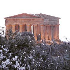 """@igers_agrigento @iger.sicilia @ig_sicilia_ #agrigento #sicilia #sicily #instagood #follow #photooftheday #followme #beautiful #picoftheday #instadaily…"""