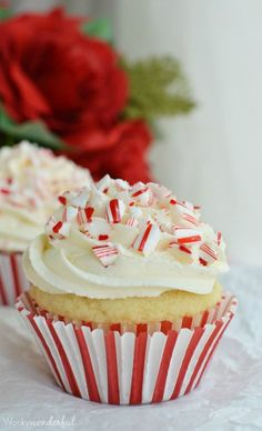 30 Easy Christmas Cupcake Ideas - Eggless Cupcakes with Candy Canes and Dairy-Free Frosting christmas baking ideas easy Holiday Desserts, Holiday Baking, Christmas Baking, Holiday Recipes, Christmas Recipes, Cupcake Recipes, Cupcake Cakes, Dessert Recipes, Rose Cupcake