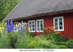 A pretty Scandinavian thatched red cottage and lush garden.