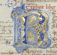 Cologny, Fondation Martin Bodmer, Cod. Bodmer 125 : Ovide, Métamorphoses. Italie · XIVe siècle (vers 1320?), annotations des XIVe-XVe siècles.  http://www.e-codices.unifr.ch/fr/list/one/cb/0125