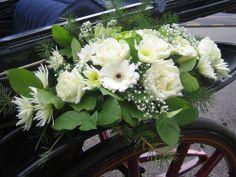 Plants, Flower Arrangements, Cars, Boyfriends, Plant, Planets