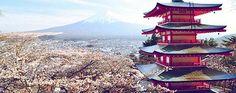 Laura's Story: #Japan