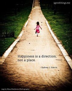 Happiness is a direction not a place.