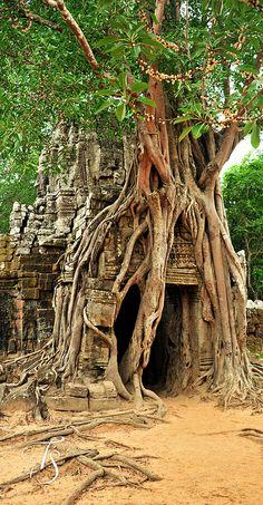 I stood in this very doorway 6 years ago! Angkor Wat, Siem Reap, Cambodia.