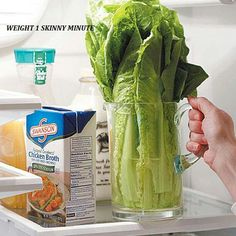 A little water in a large glass makes lettuce and celery last longer