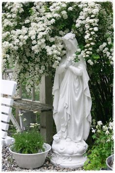 White statuary and white roses