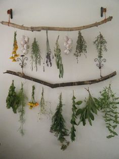 Beautiful project to dry wildflowers and hang herbs in your home