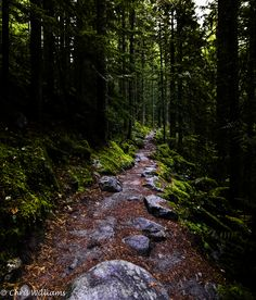 The Talapus and Olallie Lakes trail in Snoqualmie, WA