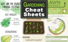 Gardening-cheat-sheets-feature-photo.jpg 620×390 pixels
