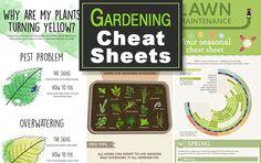 www.thegardenglove.com wp-content uploads 2016 02 Gardening-cheat-sheets-feature-photo.jpg