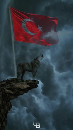 Assassin Logo, Turkey Flag, S8 Wallpaper, Wallpapers, Ottoman Turks, Cute Baby Cats, Wolf Spirit Animal, Turkish Army, Microsoft