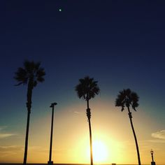 "Instagram @pslilyboutique ""October Sky @ibakefilm  10.22.15 #huntingtonbeach #california #calilife #losangeles #blogger #instadaily #beautiful #sunset #pslilyboutique #instamood #love…"""