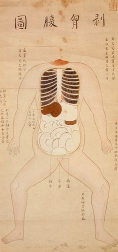 Japan's first recorded human dissection, 1754    These illustrations are from a 1754 edition of a book entitled Zōzu, which documented the first human dissection in Japan, performed by Tōyō Yamawaki in 1750. Although human dissection had previously been prohibited in Japan, authorities granted Yamawaki permission to cut up the body of an executed criminal in the name of science.
