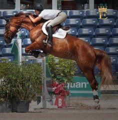 Equinus International  Omg. Her leg.