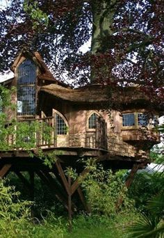 what a treehouse!!