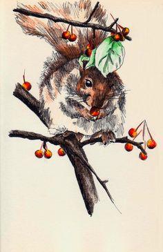 Squirrel's Treasure - 8/4/14 - esolomon