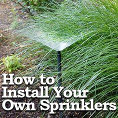 25 Best Diy Sprinkler System Images On Pinterest Potager Garden
