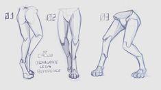 Human Figure Drawing Reference Digitigrade Legs Reference by Cacuu - Leg Reference, Art Reference Poses, Reference Images, Human Figure Drawing, Figure Drawing Reference, Anatomy Drawing, Human Anatomy, Drawing Base, Drawing Tips