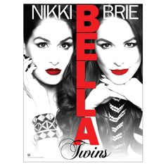 the bella twins poster.... LOVE  this photo of them