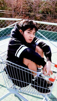 EXO Chanyeol in a shopping cart. Chanyeol Cute, Park Chanyeol Exo, Baekhyun, Kpop Exo, Wattpad, Happy Playlist, Exo Facts, Exo Lockscreen, Z Cam