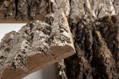 Bark makes for a beautiful cladding and facade material
