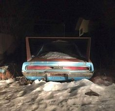 He's a Big Dumb Animal, Folks 1969 Dodge Charger Daytona, Dodge Charger Rt, Dodge Daytona, Dumb Animals, Junkyard Cars, Plymouth Superbird, Abandoned Cars, Barn Finds, Old Cars