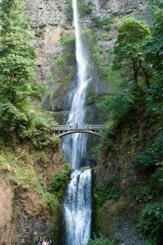 Multnomah Falls, Oregon - just a quick half-hour from Portland Great Places, Places To See, Beautiful Places, A Well Traveled Woman, Multnomah Falls, Lost In The Woods, Waterfall Hikes, Falls Creek, Oregon Usa