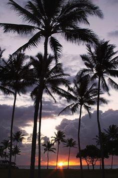 Kuoloa Sunrise, Oahu, Hawaii   WF