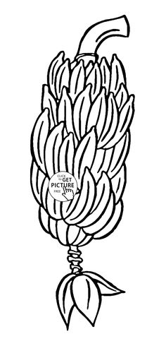 Big Bunch Of Bananas Fruit Coloring Page For Kids Fruits Pages Printables Free