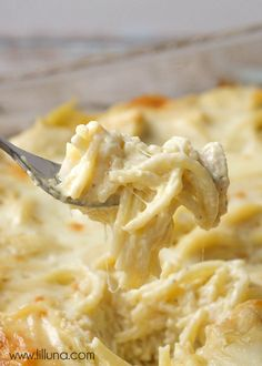 Easy and delicious Cheesy Chicken Tetrazzini - a family favorite dinner meal!.