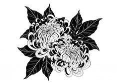 Japanese Flower Tattoo, Japanese Tattoo Designs, Japanese Flowers, Flower Tattoo Designs, Flower Tattoos, Flower Tattoo Drawings, Chrysanthemum Drawing, Chrysanthemum Flower, Blackwork