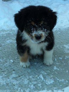 Winter Is Coming http://ift.tt/2hSmjZ5
