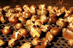 #autumn #chestnut #visitbari © visitbari A.P.