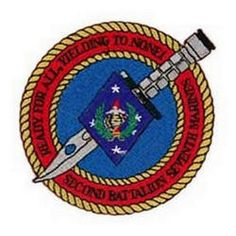 2nd Bn 7th Marines Patch