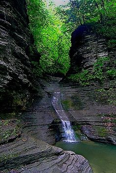 Clark's Gully near Canandaigua, New York.