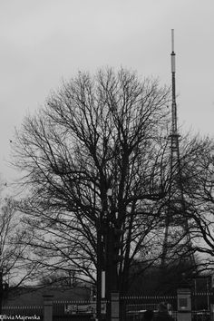 View of Crystal Palace Antenna