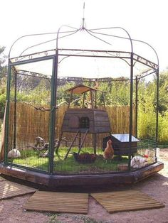 Repurposed salvaged gazebo frame made into a chicken coop; add chicken wire, gate, for those who want to go country; upcycle, recycle, salvage, diy, repurpose! For ideas and goods shop at Estate ReSale & ReDesign, Bonita Springs, FL. Notice the pallet flooring? Another level of nice job! For those who don't want chickens, this could totally be a Cat Patio for those who don't want free range kitties.