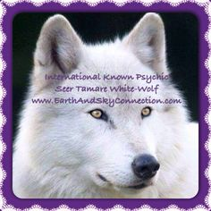 #Spring is a good time to #CheckInWithSpirit allow me #TamareWhiteWolf the honours of doing a #psychicreading for you, see what's in store for your future?#Love #Health #Business #online #telephone or in person  #EarthAndSkyConnection  705-739-7171 www.EarthAndSkyConnection.com