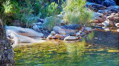 Bainskloof pool, been there! Cape Town Holidays, Xhosa, Rock Pools, African Beauty, Hiking Trails, Places Ive Been, South Africa, Rivers, Landscape