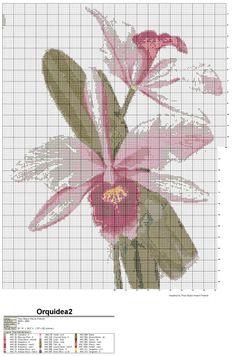 Não há quem resista bordar uma linda orquídea.      VAMOS BORDAR!