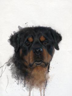 Custom made  Rottweiler portrait by PawsomePetPortraits on Etsy