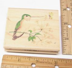 HUMMINGBIRD PERCHED HONEYSUCKLE BLOSSOM BRANCH  NANA & FRIENDS  Rubber Stamp   #uptown #regular