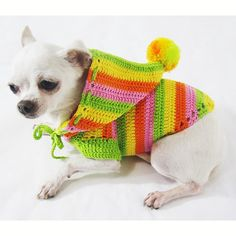 Dog Hoodie Sweatshirt Rasta Colorful Pet Clothing Casual Puppy Clothes Cotton…