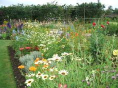 helmsley garden | helmsley-walled-garden-2