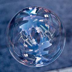 NY in a bubble