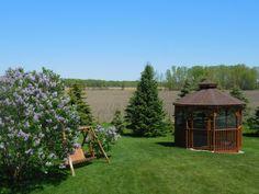 Lilacs May 2015 | A Homespun Country Life spring blog post, lilacs, flowers, garden
