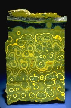 Slice of green and yellow orbicular agate from the National Mineral Collection, Photo by Chip Clark
